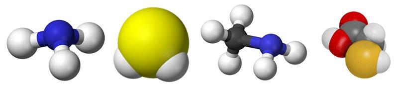 Abbattimento Odori le principali molecole maleodoranti