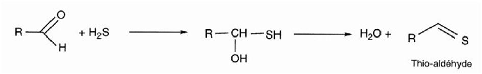Abbattimento Odori reazione di neutralizzazione 2