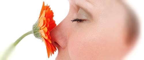 Abbattimento Odori e l'olfatto: quali emozioni è in grado di suscitare in noi un odore?